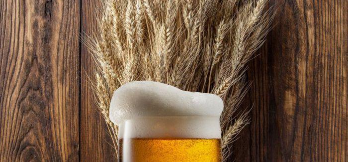 """用啤酒""""链接""""世界"""