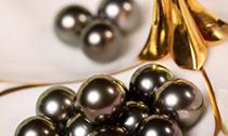 浅聊金珠 黑珠和白珠