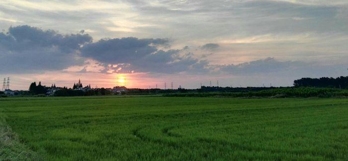 浙江海宁施工地发掘27座墓葬