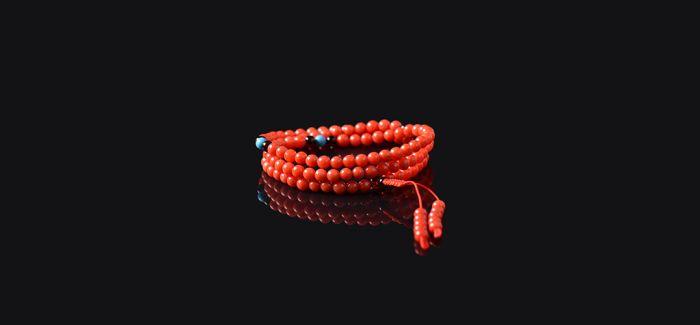 红珊瑚VS黑珊瑚