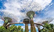 新加坡的另类打开方式