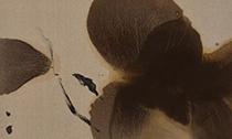 2019苏富比网拍专场中的10件亚洲及西方艺术品