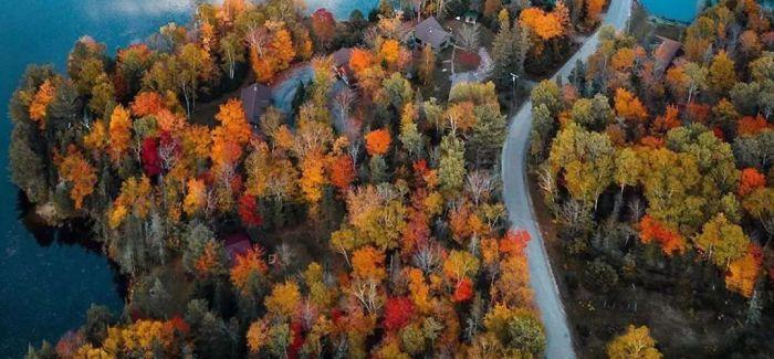 秋天 绕着地球看树叶
