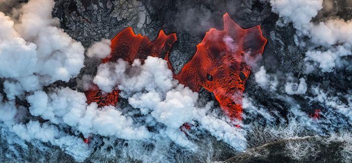 野外生态摄影的视觉震撼