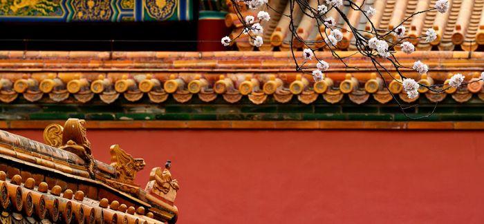 9国专家聚首故宫 探讨世界文化遗产保护