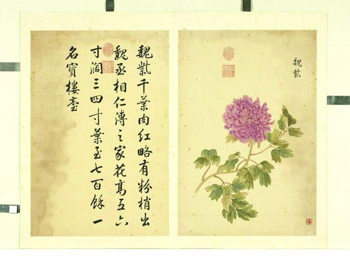 图5-1 清邹一桂《墨妙珠林》(未)册 魏紫