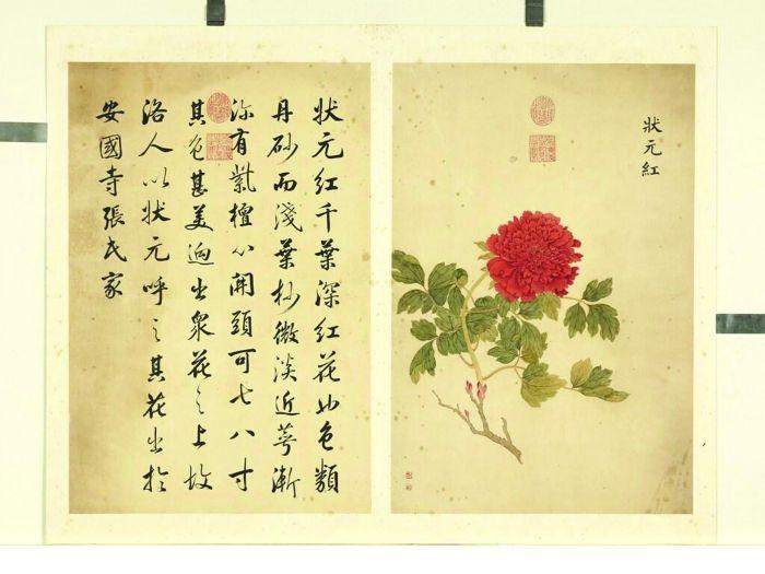 图5-1 清邹一桂《墨妙珠林》(未)册 状元红