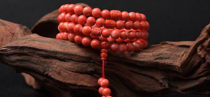 红珊瑚的困境