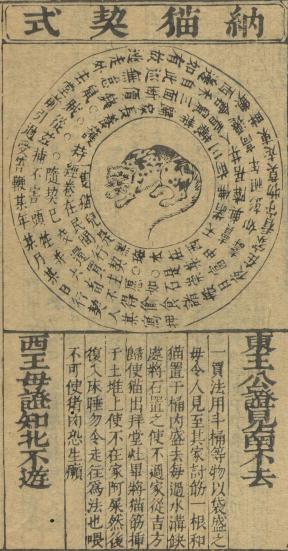 唐僧取貓還是包公請貓:中國家貓傳說溯源
