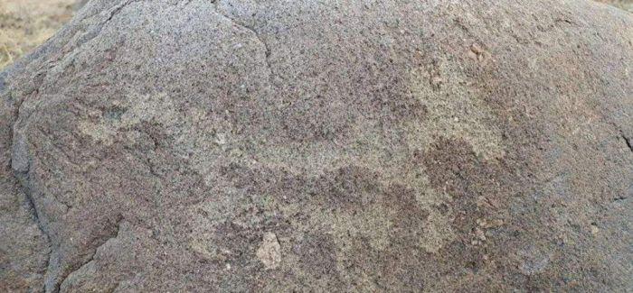 内蒙古阿拉善布德日根呼都格岩画群遗址发现11幅岩画