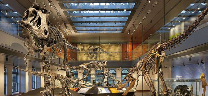 渐进的研学风潮下 博物馆何去何从