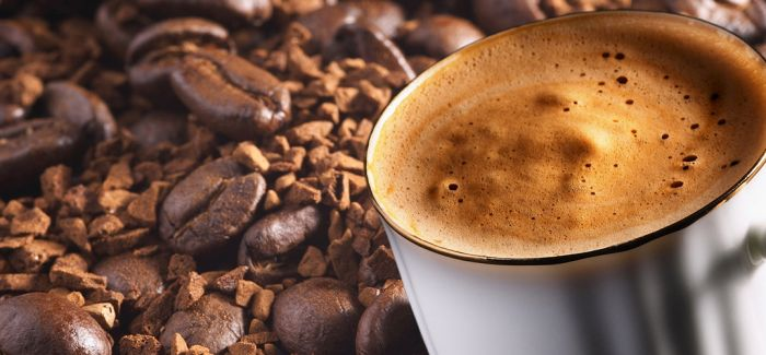 麝香猫与咖啡豆那些不得不说的事