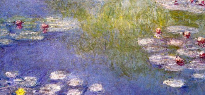 艺术家用什么方式看花?