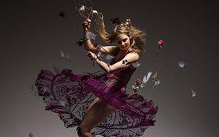 舞蹈:肢体的语言