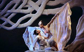 舞剧《朱鹮》重现舞台