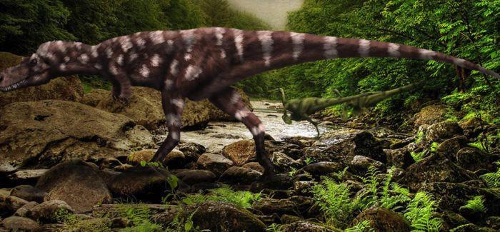 """1.9亿年前 肉食恐龙曾在重庆""""小跑"""""""
