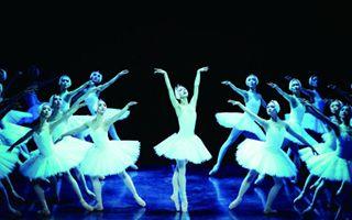 上芭《天鹅湖》为上海大剧院复演揭幕