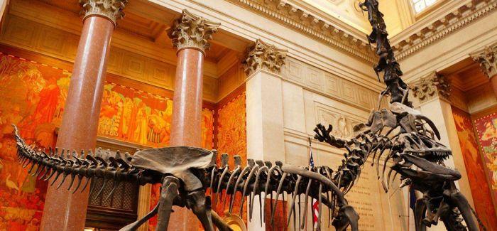 疫情影响 全美三分之一博物馆或永久关闭