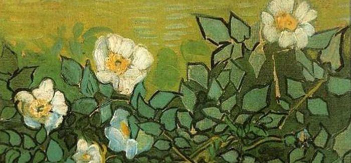 梵高的花祭