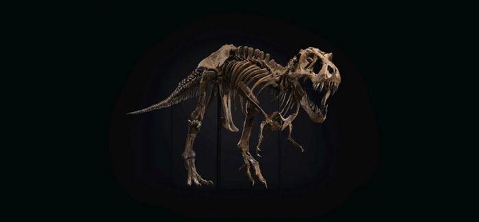 霸王龙化石称霸佳士得纽约二十世纪艺术晚间拍卖