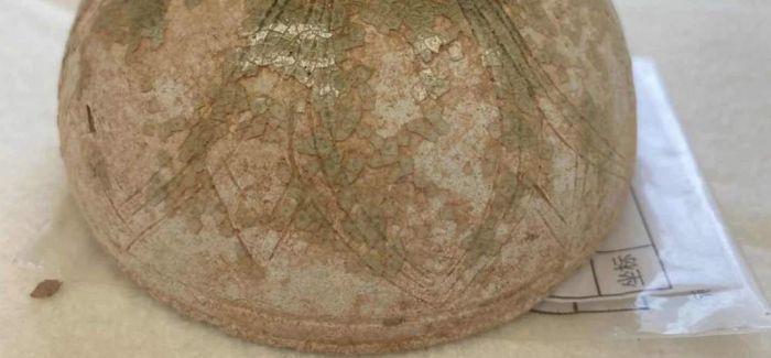 广东一复建工程项目考古发现先秦时期遗存
