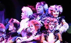 """百老汇《猫》丨""""喵星人""""的经典旋律"""