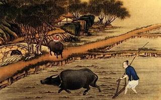 专题 | 二十四个节气:中国人的存在与时间