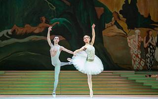 芭蕾舞剧中的公主们
