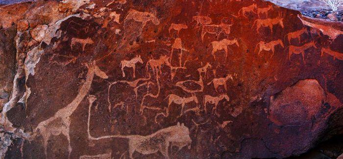 纳米比亚初体验