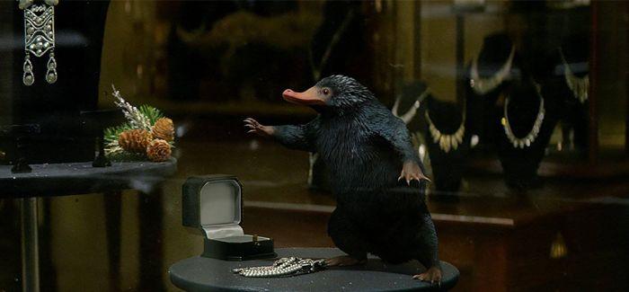 """走!到伦敦自然历史博物馆探索""""神奇动物""""们"""