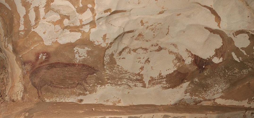 印尼发现迄今最古老人类洞穴壁画 | 一周艺事