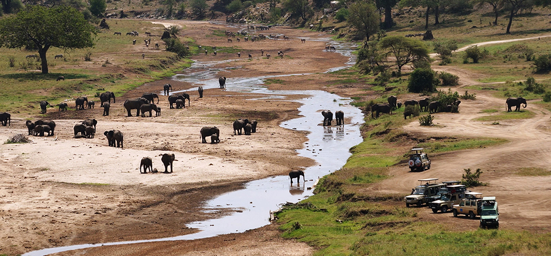 坦桑尼亚初体验