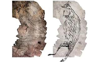 澳大利亚发现距今1.73万年岩石画