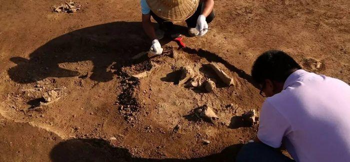 河南渑池发现42座春秋戎人墓葬