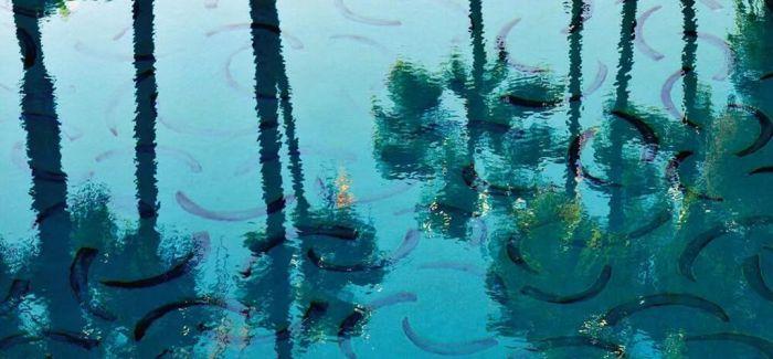 这些艺术家设计的游泳池 或许只能成为一处景观