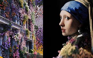 缤纷花朵用生机盎然的模样进驻城市角落