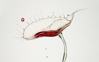一位德国摄影师镜头下的水滴世界