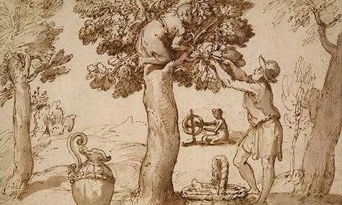 「意大利文艺复兴纸上绘画」
